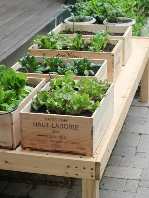 Idee low cost per il giardino. Prontuario per immagini - Te La Do Io ...
