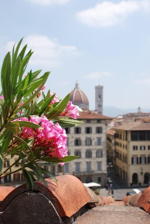 Firenze Dall Alto Aprono Le Terrazze Panoramiche Più Belle
